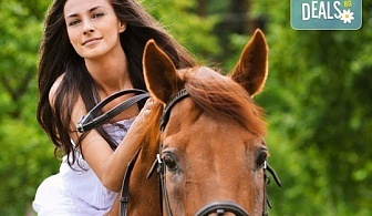 Бъдете сред природата! 45 минути разходка с кон от конна база София – Юг, Драгалевци!