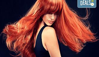 Боядисване на косата с боя на клиента, трифазна арганова терапия и оформяне на прав сешоар в студио за красота Jessica!