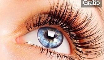 2 броя цветни контактни лещи Color 55, разтвор Sodyal 360мл, контейнер за съхранение и включена доставка