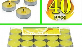 40 бр. чаени свещи против комари