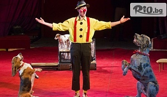 Цирк с дресура на животни на 16 Февруари /събота/ от 16:00 часа, от Кинотеатър Освобождение