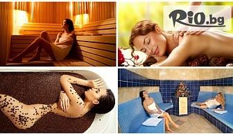 Цялостен масаж + терапия по избор (бг кисело мляко, шоколад или кафе и мед) или Антистрес масаж + ексфолираща терапия по избор със 74% отстъпка от 17.40лв, от Dream Wellness Center