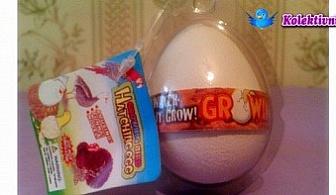 ЗА ДЕЦА! Забавно, образователно и уникално излюпващо се Яйце! Играй и виж какво ще се излюпи от яйцето - кокошка, динозавър, пате или пуйка само за 3.60 лв.