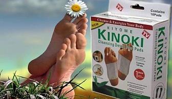 Detox Kinoki с 10 броя пластири само за 2.80 лв. от онлайн магазин Grabko.bg
