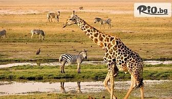 """16-дневен Круиз """"Магията на Африка"""" - Дърбан, Санта Лусия, нац. парк Шлушлуе-Имфолози, Порт Елизабет, Кейптаун, водопада Виктория, нац. парк Чобе, Йоханесбург, от Травел Холидейс"""