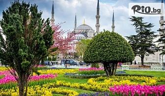 4-дневна екскурзия за Фестивала на лалето в Истанбул! 2 нощувки със закуски, транспорт и водач, от Еко Тур Къмпани