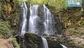 Еднодневна екскурзия през ноември до Струмица и Колешински водопад! Транспорт и водопад от туроператор Поход!