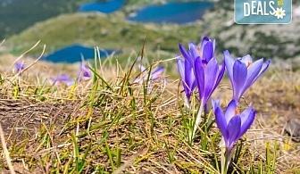 Еднодневна екскурзия на 10.08. до Седемте Рилски езера! Транспорт, планински водач и туристическа застраховка, от Шери Тур!