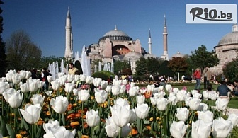 Екскурзия за Фестивала на лалето в Истанбул! 2 нощувки със закуски в хотел 2/3* + автобусен транспорт и екскурзовод, от ABV Travels