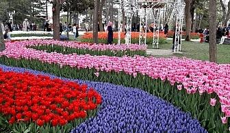 Екскурзия за фестивала на лалето в Истанбул! Транспорт + 2 нощувки на човек със закуски в хотел 3* + посещение на парка Емирган и Одрин от Караджъ Турс
