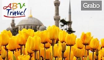 Екскурзия за Фестивала на лалето в Истанбул! 2 нощувки със закуски, плюс транспорт