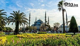 Екскурзия за Фестивала на Лалето в Истанбул с посещение на Принцовите острови! 2 нощувки със закуски в Golden Tulip Istanbul Bayrampasa + транспорт от Варна, от Караджъ Турс