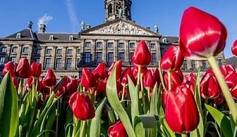 Екскурзия до Холандия за Фестивала на лалето и парада на цветята от Еко Тур Къмпани