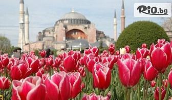 Екскурзия до Истанбул за Фестивала на лалето! 2 нощувки със закуски + транспорт и водач, от Дениз Травел