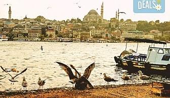 Екскурзия до Истанбул и Одрин, Турция! Дати по избор от януари до март 2017: 2 нощувки, закуски, транспорт и екскурзовод!