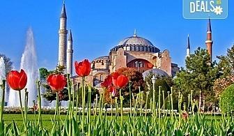 Екскурзия до Истанбул през март или за Фестивала на лалето през април! 2 нощувки със закуски в хотел 3* или 4*, транспорт и водач от Глобус Турс!