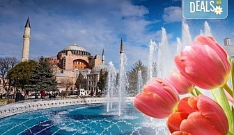 Екскурзия до магичния Фестивал на лалето в Истанбул, Турция! 2 нощувки със закуски в хотел 3*, транспорт, посещение на Одрин и Чорлу!