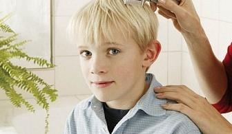 Електрически гребен против въшки и бълхи