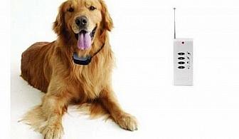 Електронен нашийник за дресура на куче за 38 лв., вместо 70 лв. с 46% отстъпка от онлайн www.albo-bg.info!