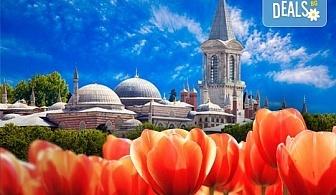 Фестивал на лалето в Истанбул 2019 с Караджъ Турс! 2 нощувки със закуски, транспорт, екскурзовод, посещение на Емирган Парк, посещение на Одрин