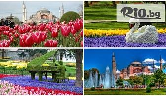 Фестивал на лалето в Истанбул! 2 нощувки със закуски + автобусен транспорт и посещение на Мол Оливиум и град Одрин - за 119лв, от ТА Дениз Травел