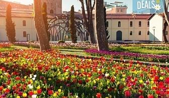 Фестивал на лалето в Истанбул през април с Комфорт травел! 2 нощувки със закуски, транспорт и бонус посещения на Одрин, църквата Свети Стефан и парка Емиргян!