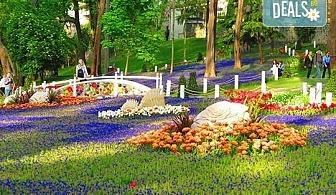 Фестивал на лалето 2019 в Истанбул със Запрянов Травел! 2 нощувки със закуски, транспорт, посещение на МОЛ Истанбул, програма в Одрин
