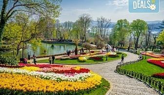 Фестивал на лалето през април в Истанбул! 2 нощувки със закуски в Golden Tulip Istanbul Bayrampasa 5*, транспорт, посещение на Принцови острови и трансфер до Емирган парк