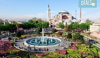 Фестивал на лалето през април в Истанбул! 2 нощувки със закуски в Courtyard By Marriott Istanbul International Airport 4*, транспорт, посещение на Принцовите острови