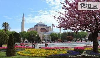 Фестивала на лалето в Истанбул през Април! 2 нощувки със закуски в хотел 3* + автобусен транспорт и посещение на Одрин, от ТА Поход