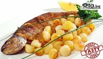 Хапни свежа салата и основно ястие с гарнитура по избор, от TASTY Restaurant във Варна