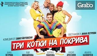 """Хитовата комедия """"Три котки на покрива""""на 1 Февруари"""