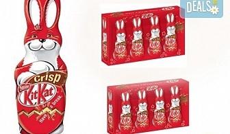 Изненадайте Вашето дете с 1 зайче Kit Kat и 2 сета от малки зайчета Kit Kat от Kafemania.bg! Ограничени количества!