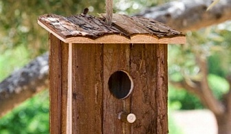 Къща за птици Trunk Pet Prior