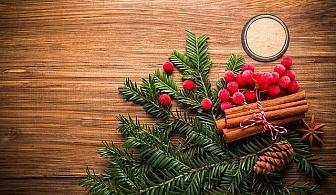 Коледа в Чепеларе! 3 нощувки на човек със закуски и вечери, едната от които традиционна в в хотел Мартин