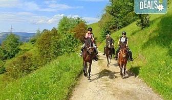 """Конна езда и преход с коне в Родопите! 2 часа преход, видеозаснемане с екшън камера и безплатен басейн, от Ранчо """"Диви Родопи"""""""