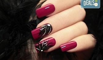Красиви и дълготрайни цветове! Маникюр с гел лак и 2 декорации в салон за красота Мария Везенкова!