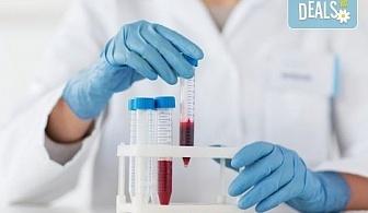 Кръвно изследване на бактерията Helicobacter Pylori IgA и IgG в СМДЛ Кандиларов!