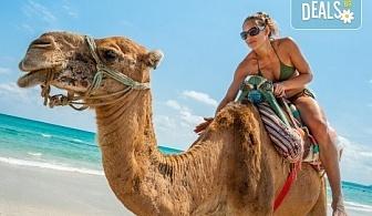 Last minute! Екзотична почивка през септември в Тунис! 7 нощувки на база All Inclusive в хотел 4*, самолетен билет, летищни такси и трансфери