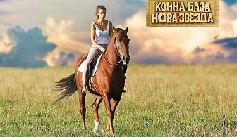 20 или 30 мин. конна езда в гората или на манеж от конна база Нова Звезда, София