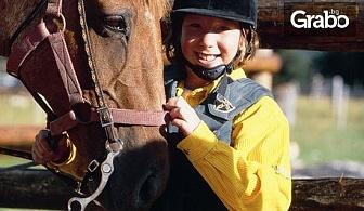 30-минутен урок по конна езда с треньор, за начинаещи или напреднали, с опция на закрито
