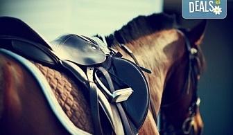 60 минути конна езда с водач и бонус стрелба с лък от конна база София – Юг, Драгалевци!