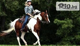 60-минутна конна езда с инструктор, от Конна база София - Юг