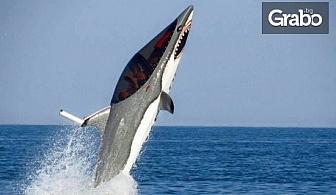 """Най-новият воден атракцион в България и Европа! 15-минутно гмуркане с """"Акула""""в Слънчев бряг"""