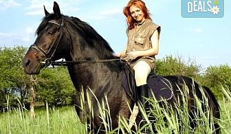 Незабравимо приключение за Вас или близък човек! Двучасов конен поход от конна база София – Юг, кв. Драгалевци!