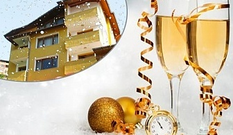 Нова Година в Смолян! 2 нощувки на човек със закуски и вечери, едната Празнична с програма в хотел Роял