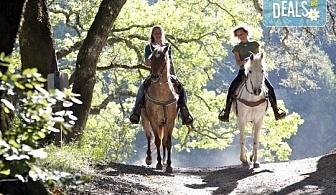 """Обичате ли конете? 4 дни обучение по конна езда, общо 210 минути и преход по избор от конна база """"София – Юг"""""""
