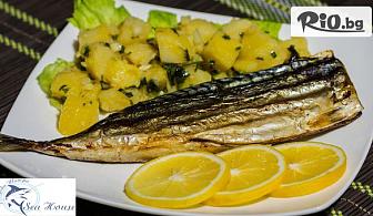 Опитайте изцяло морско меню - Салата и Основно ястие по избор на страхотна цена, от Рибен ресторант Рибарска шатра
