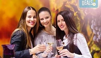Отпразнувайте 8-ми март в Бела паланка в Сърбия! 1 нощувка със закуска и празнична вечеря с неограничени напитки и богато меню, транспорт и водач