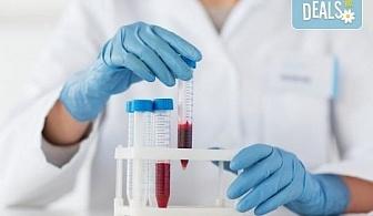 Пакет от 6 хормонални изследвания и пълна кръвна картина на 22 показателя в Медицински лаборатории Сана!